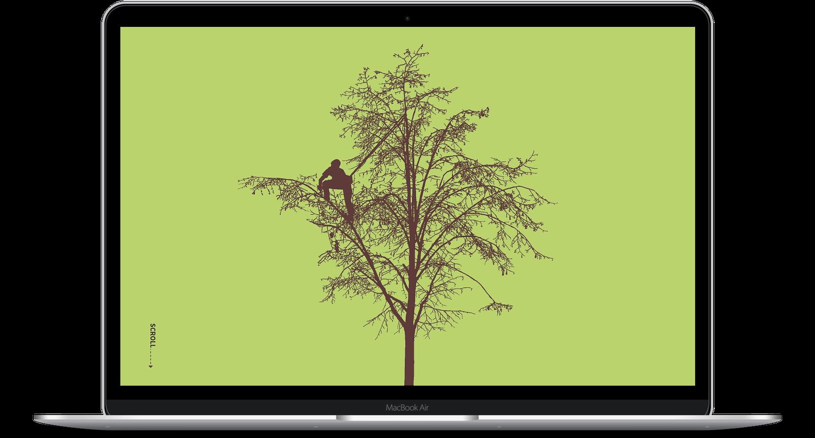 bambach-laptop Scrollmagic